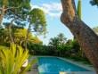 Une piscine aux parois de verre plongée dans la végétation