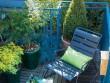 Des plantes en pots pour un balcon 100% green