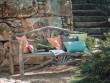 Un vieux banc en bois plein de charme