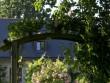 Une roseraie dans un jardin d'accueil à l'esprit so british