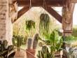 Une terrasse aux allures de patio mexicain