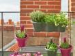 Des pots colorés sur mon mini balcon