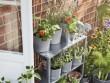 Des étagères bien vertes pour un effet serre sur le balcon