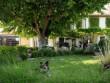 Un immense jardin façonné par des passionnés