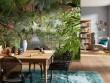 Ambiance tropicale dans le séjour