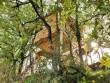 Une cabane perchée dans les arbres