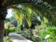 Jardin exotique & botanique de Roscoff - Finistère