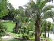 Jardins de la Fontaine - Gard