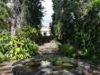 Jardin botanique de Saint-Leu - La Réunion