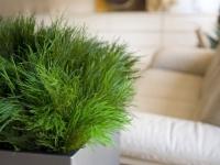 10 accessoires pour prendre soin de ses plantes pendant les vacances. Black Bedroom Furniture Sets. Home Design Ideas