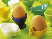Des œufs au menu !