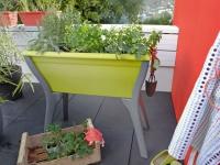 Fleurir son balcon : coup d'oeil sur les nouveautés