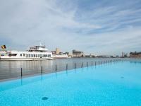 Une piscine géante filtrée par un champ de roseaux
