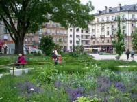 Les villes les plus vertes de France montrent l'exemple