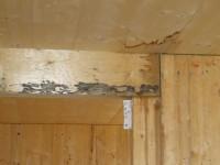 Construction en bois : les malfaçons les plus courantes en images
