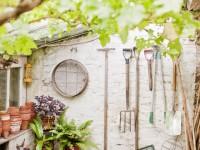 Entretenir son jardin à l'automne : conseils et astuces