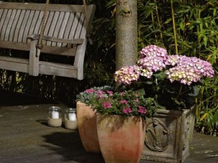Ambiance romantique dans mon jardin d'hiver...
