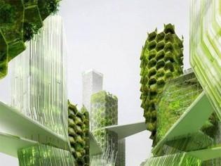 L'Etat subventionne un projet de micro-algues en façade