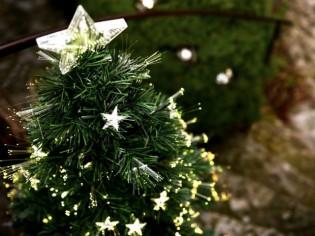 Noël illumine votre intérieur...