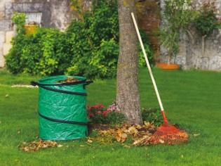 Jardinage d'automne : Opération anti-feuilles mortes