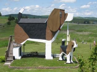 Insolite : Ils ont fait construire une maison en forme de chien