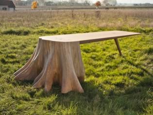 Insolite : Une table qui prend racine
