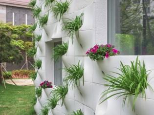 Des pots de fleurs incrustés dans les façades
