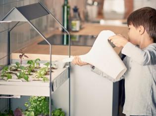 Dix objets malins pour jardiner avec les enfants