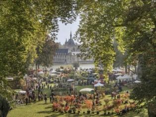 Journées des Plantes : un voyage fleuri autour du monde à Chantilly