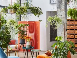 10 façons simples et agréables de végétaliser son intérieur