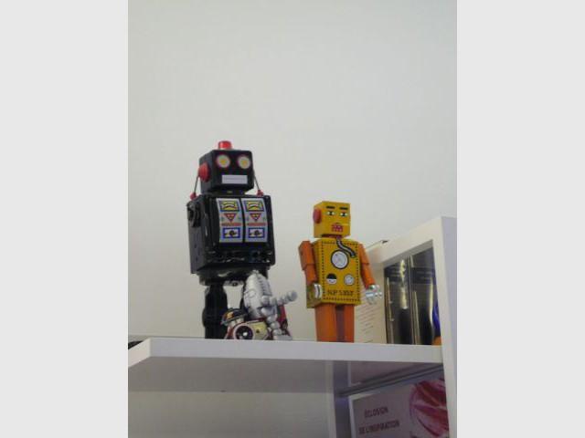 robots fle appart blanc