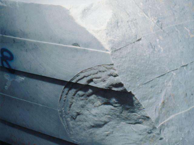 marbretrois flos
