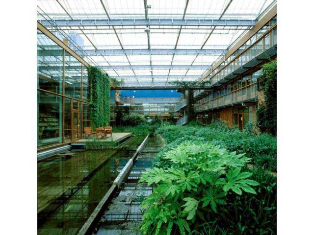 Jardin intérieur IBN behnisch