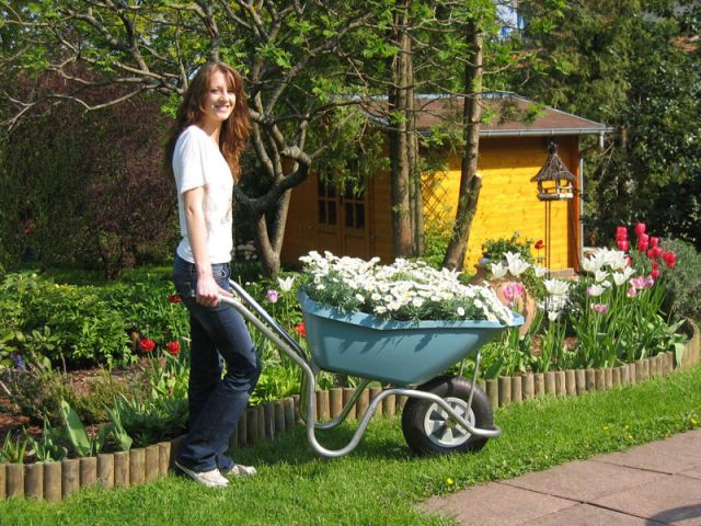 Plume - shopping outils jardin