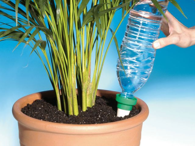 Aquasolo - shopping outils jardin