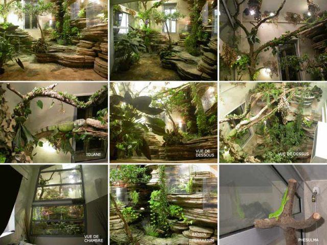 Ecosculpture jungle 2
