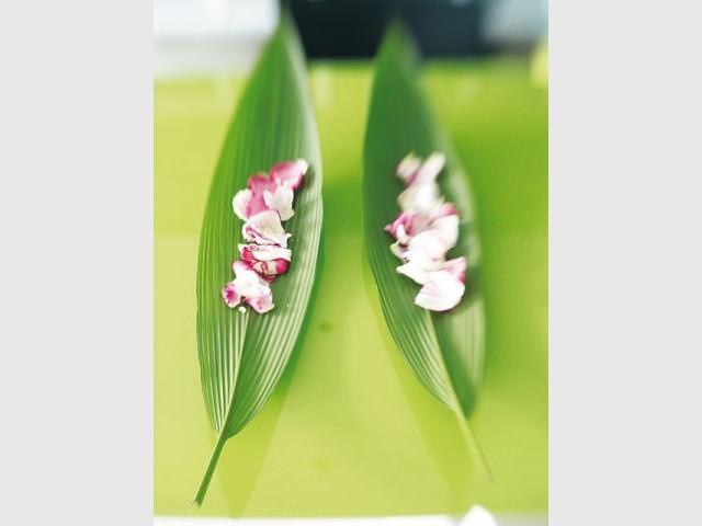 Zen - Fleurs de Tricia Guild