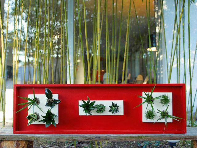 Sur un banc - Flowerbox plante décoration mur