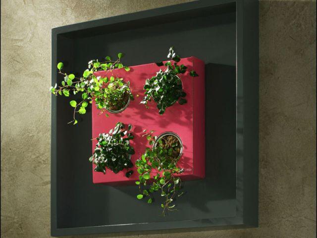 En carré encadré - Flowerbox décoration plante mur