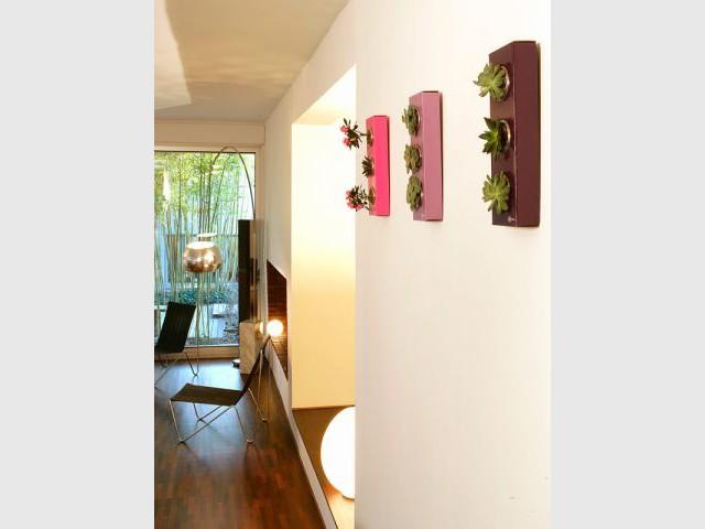 A l'enfilade sur un mur - Flowerbox décoration plante mur