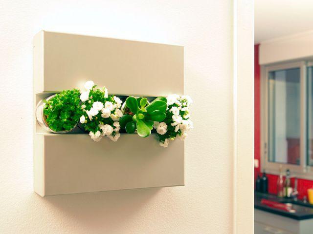 Support métallique - Flowerbox décoration plante mur