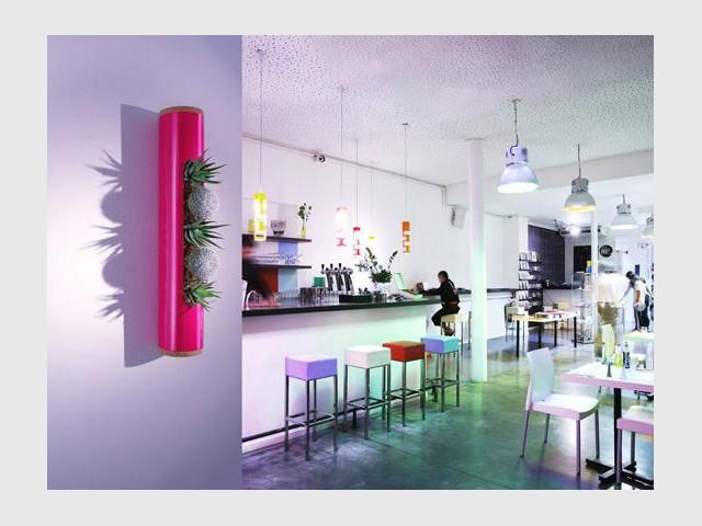 Dans la cuisine - Flowerbox décoration plante mur