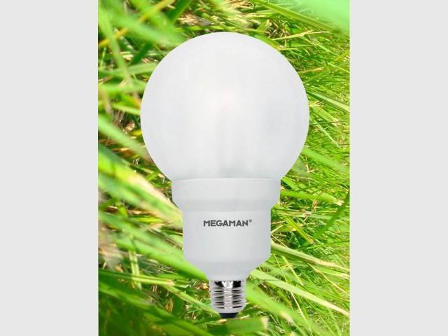 ampoule environement électricité