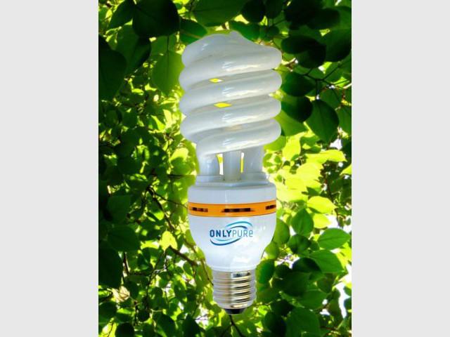 L'ampoule purifiante - Ampoule environnement électricité énergie
