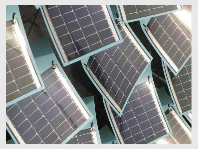 Polyéthylènes - Grow de Smit lierre solaire