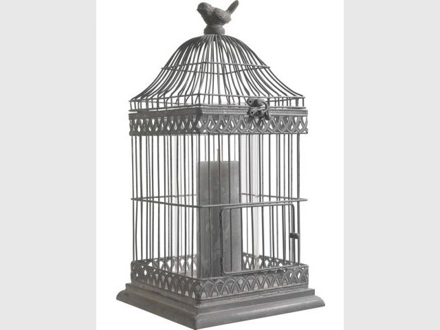 Cage photophore