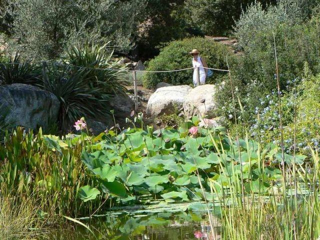 jardin - événement Rendez-vous aux jardins