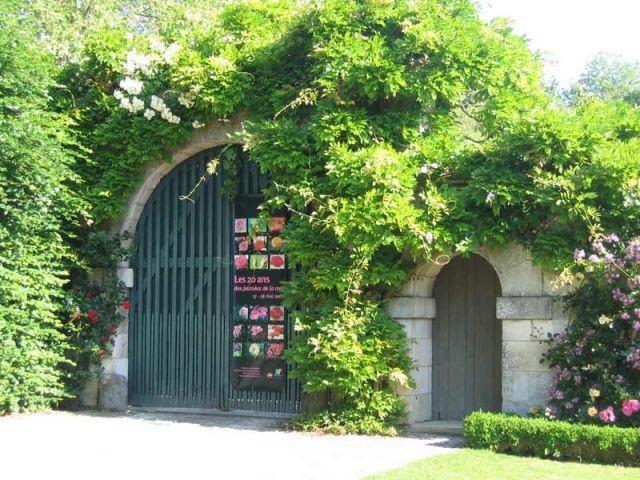 Affiche des Journées de la Rose 2008 - Prieuré de Saint-Cosme