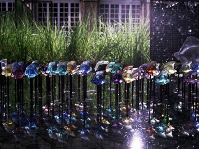 Poissons - Jardin de cristal