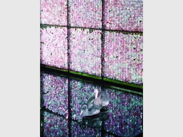 cygnes - Jardin de cristal